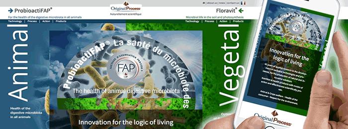 Site web responsive et animation vidéo pour Original Process